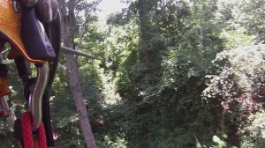 Zip-lining through the forest